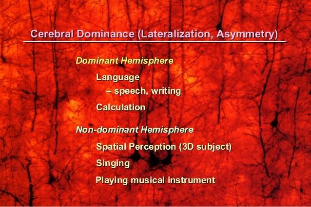 LanguageLanguage SpeechSpeech WritingWriting CalculationCalculation 3D perception3D perception SingingSinging Playing Musi...