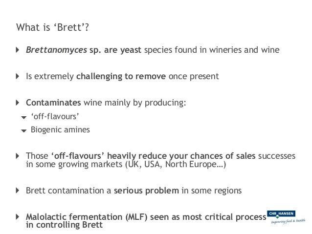 Viniflora® to control Brettanomyces during MLF Slide 2
