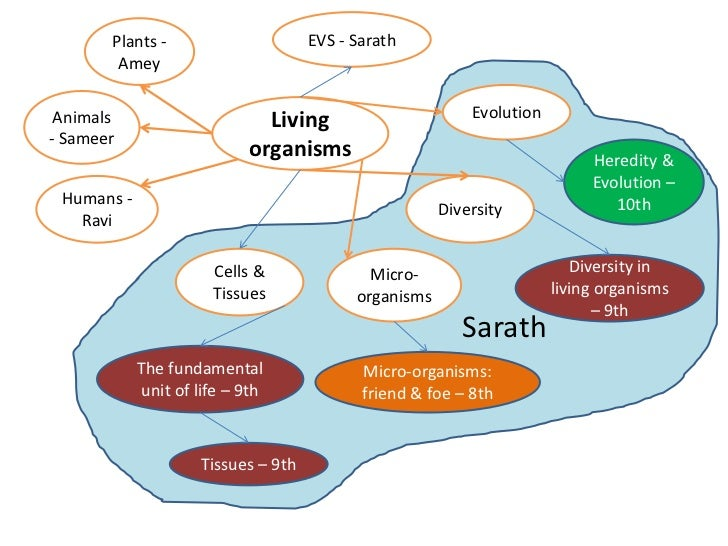 Plants -                      EVS - Sarath        Amey Animals                     Living                        Evolution...