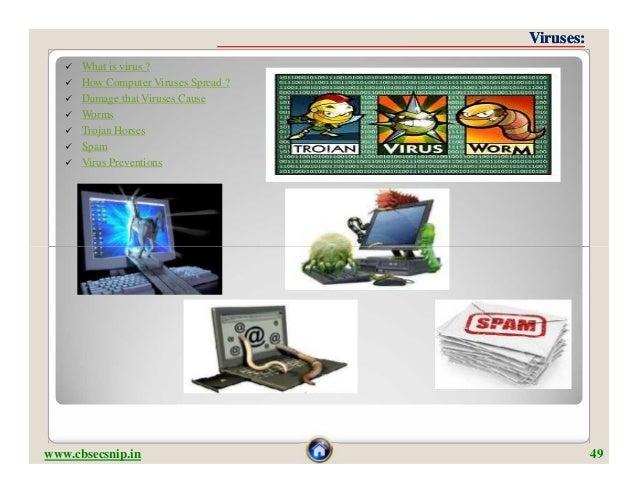 Viruses:      What is virus ?      How Computer Viruses Spread ?      Damage that Viruses Cause      Worms      Troja...