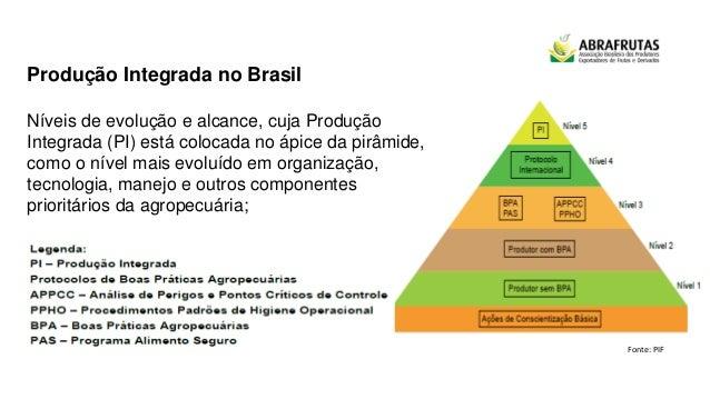 Produção Integrada no Brasil Níveis de evolução e alcance, cuja Produção Integrada (PI) está colocada no ápice da pirâmide...