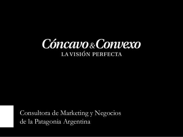 Consultora de Marketing y Negociosde la Patagonia Argentina