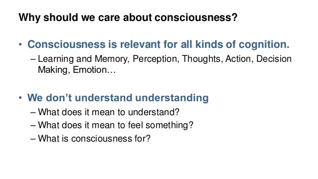 what does it mean to be conscious
