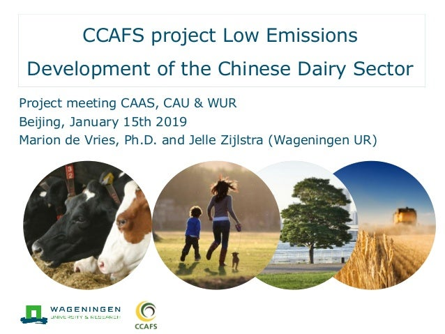 CCAFS project Low Emissions Development of the Chinese Dairy Sector Project meeting CAAS, CAU & WUR Beijing, January 15th ...