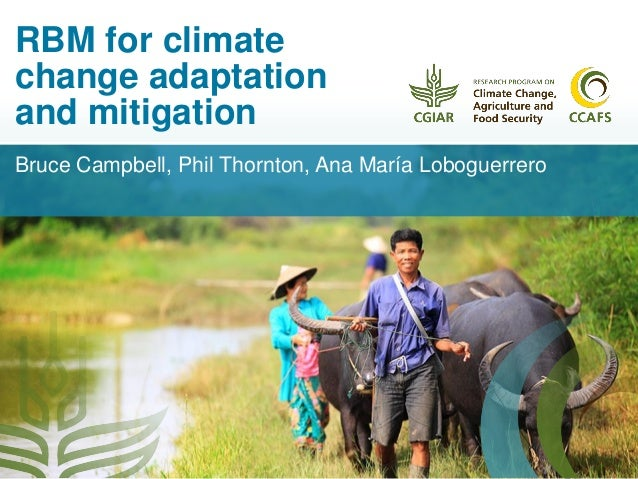 climate change adaptation and mitigation in However, the vast majority of climate change adaptation and mitigation policies are being implemented on a more local scale due to the fact that different regions must adapt differently to climate change and because national and global policies are often more challenging to enact.