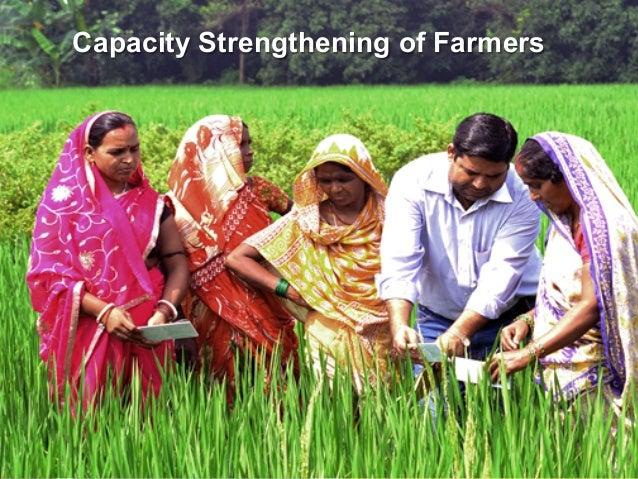 Capacity Strengthening of Farmers  13
