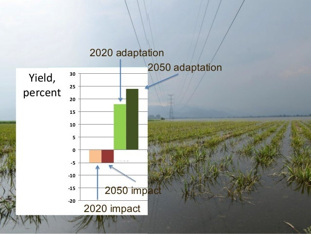 Yield,   percent       30    2020 adaptation 2050 adaptation  25   20   15   10   5   0   -‐5     ...