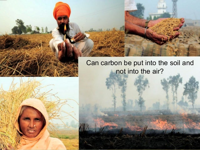 Can carbon be put into the soil and not into the air?  9