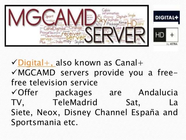 Wide Range of Different Server