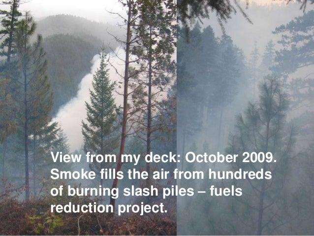 A Carbon Conservation Corps for Mobile Biochar Production Slide 3