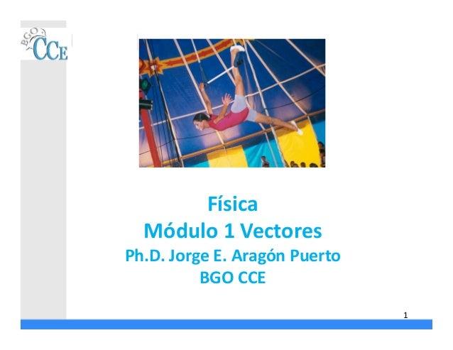 Física Módulo 1 Vectores Ph.D. Jorge E. Aragón Puerto BGO CCE 1