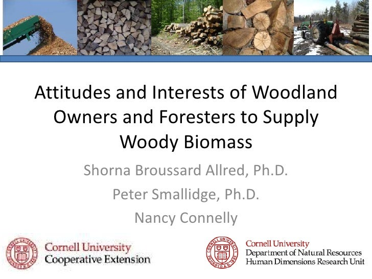 Attitudes and Interests of Woodland Owners and Foresters to Supply Woody Biomass<br />Shorna Broussard Allred, Ph.D.<br />...