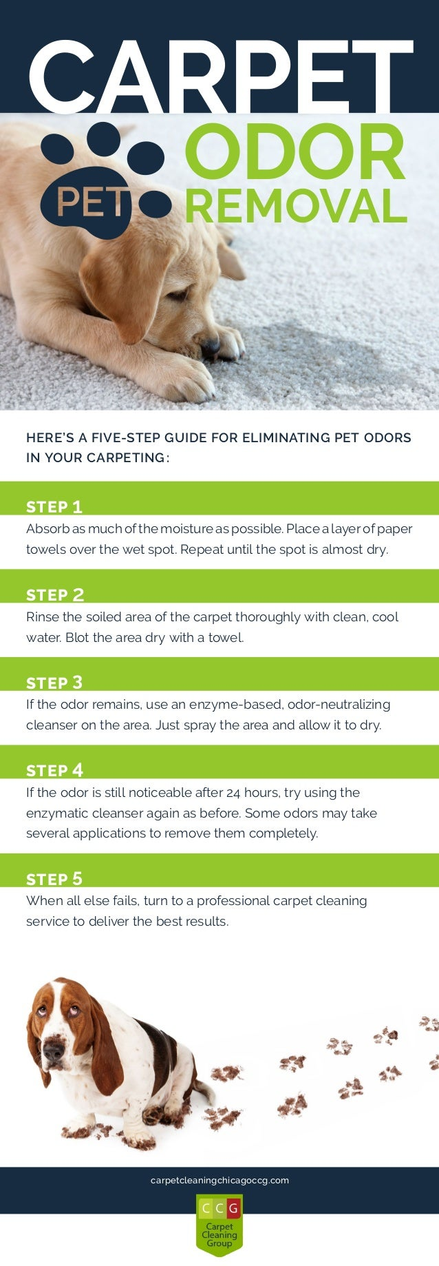 pet-odor-removal-checklist-1-638 | Carpet Pet Odor Removal Guide