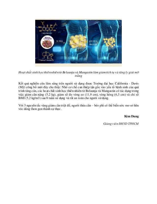 Hoạt chất sinh họcthiênnhiêntừ Belaunja và Mangastin làm giảm tích tụ và tăng ly giải mỡ trắng Kết quả nghiên cứu lâm sàng...