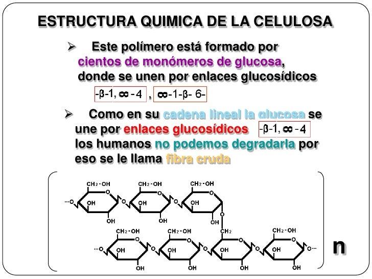 Celulosa estructura quimica pdf free