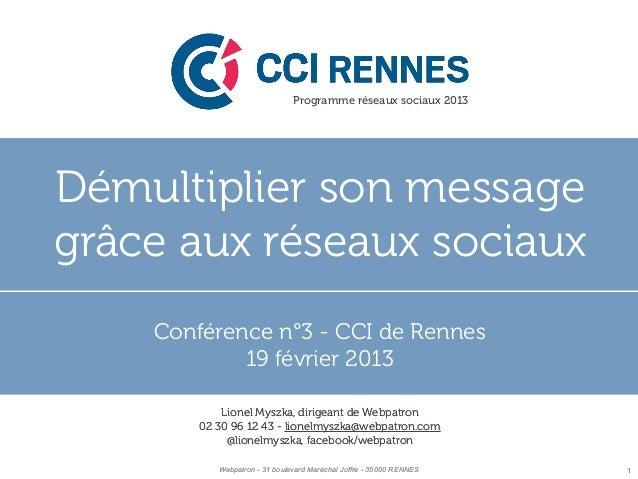 Programme réseaux sociaux 2013Démultiplier son message Se démarquer grâce auxgrâceréseaux sociaux      aux réseaux sociaux...