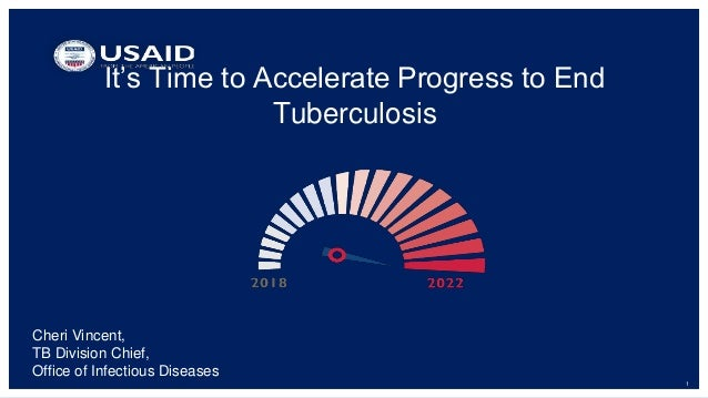 1 It's Time to Accelerate Progress to End Tuberculosis Cheri Vincent, TB Division Chief, Office of Infectious Diseases