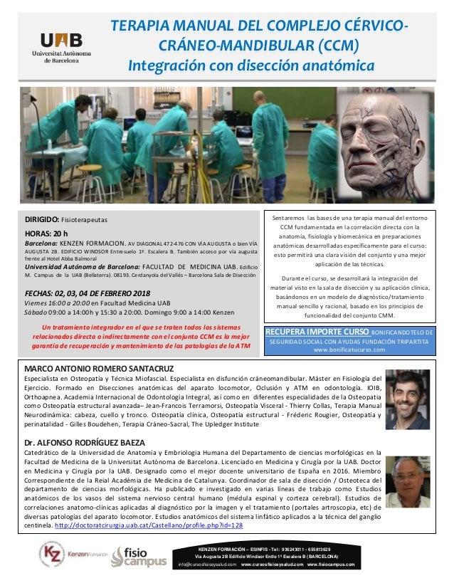 Terapia manual del complejo cérvico-craneo-mandibular