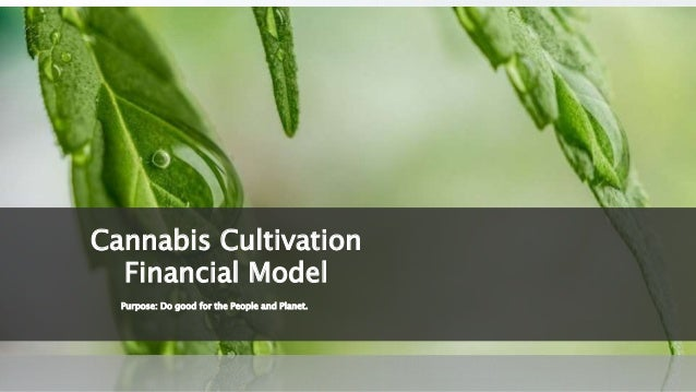 Purpose: Do good for the People and Planet. Cannabis Cultivation Financial Model