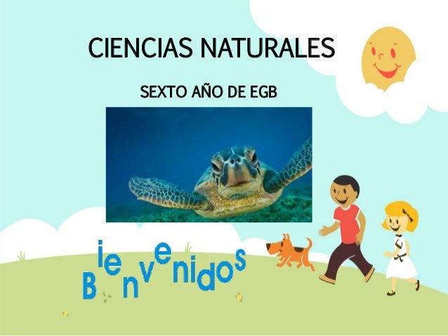 CIENCIAS NATURALES SEXTO AÑO DE EGB