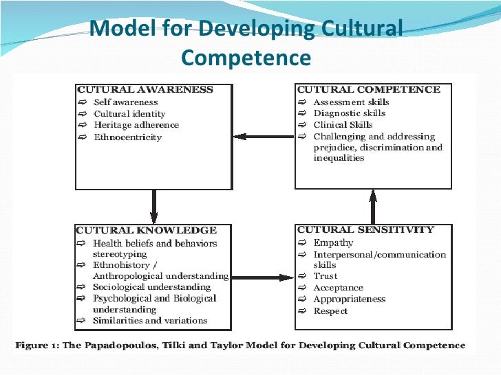 the role of cross cultural communication competence Cross-cultural communication skills provide a practical way to maximize a common understanding of the health-illness encounter of culturally diverse patients however, it is not possible for nurses to achieve a certain degree of competence in all cultures.