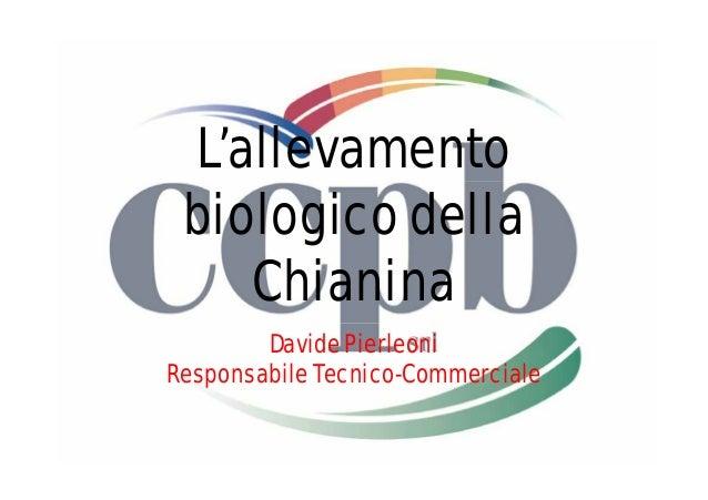 L'allevamento  biologico della  Chianina  Davide Pierleoni  Responsabile Tecnico-Commerciale