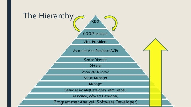 hierarchy in infosys organisation