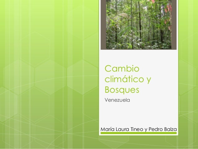 Cambio climático y Bosques VenezuelaMaría Laura Tineo y Pedro Balza