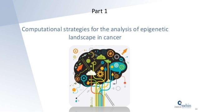 Part 1 Computational strategies for the analysis of epigenetic landscape in cancer 14