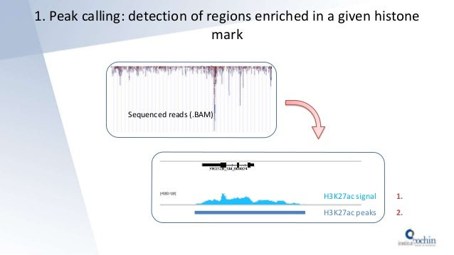1. Peak calling: detection of regions enriched in a given histone mark H3K27ac signal H3K27ac peaks Sequenced reads (.BAM)...