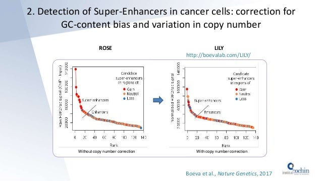 2. Detection of Super-Enhancers in cancer cells: correction for GC-content bias and variation in copy number Without copy ...