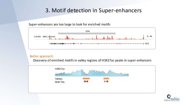 3. Motif detection in Super-enhancers Super-enhancers are too large to look for enriched motifs Better approach: Discovery...
