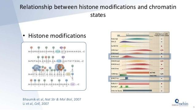 Relationship between histone modifications and chromatin states • Histone modifications Bhaumik et al, Nat Str & Mol Biol,...