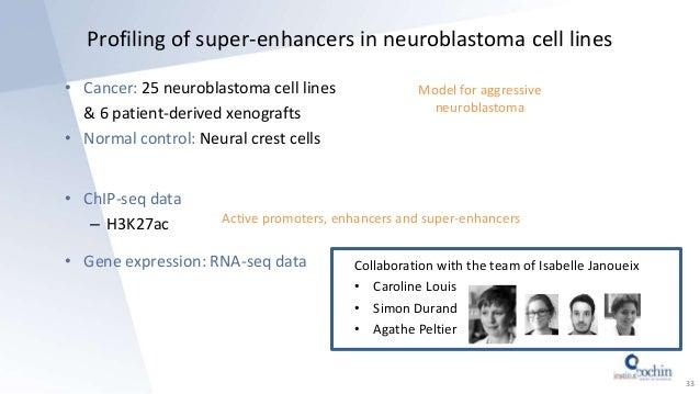 Profiling of super-enhancers in neuroblastoma cell lines • Cancer: 25 neuroblastoma cell lines & 6 patient-derived xenogra...