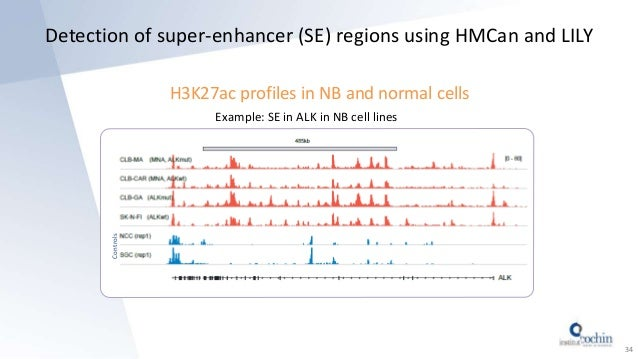 Detection of super-enhancer (SE) regions using HMCan and LILY 34 H3K27ac profiles in NB and normal cells Example: SE in AL...