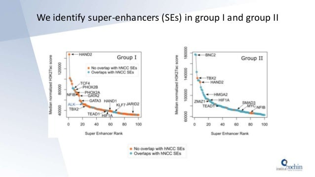 We identify super-enhancers (SEs) in group I and group II