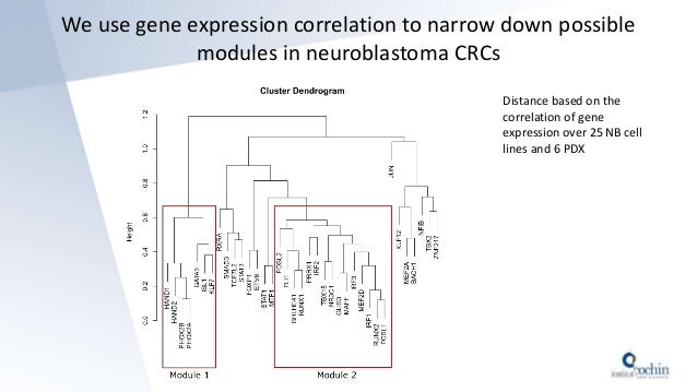 We use gene expression correlation to narrow down possible modules in neuroblastoma CRCs Distance based on the correlation...