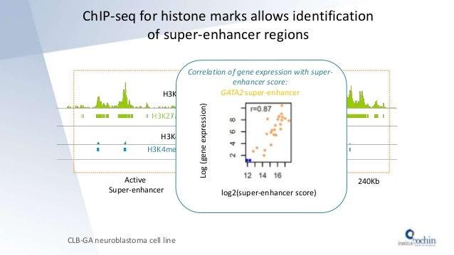 ChIP-seq for histone marks allows identification of super-enhancer regions CLB-GA neuroblastoma cell line H3K27ac H3K27ac ...