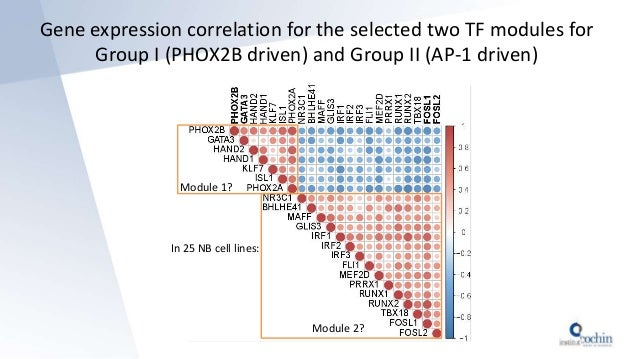In 25 NB cell lines: Module 1? Module 2? Gene expression correlation for the selected two TF modules for Group I (PHOX2B d...