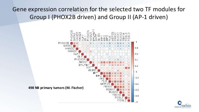 498 NB primary tumors (M. Fischer) Gene expression correlation for the selected two TF modules for Group I (PHOX2B driven)...
