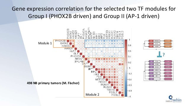 Gene expression correlation for the selected two TF modules for Group I (PHOX2B driven) and Group II (AP-1 driven) 498 NB ...