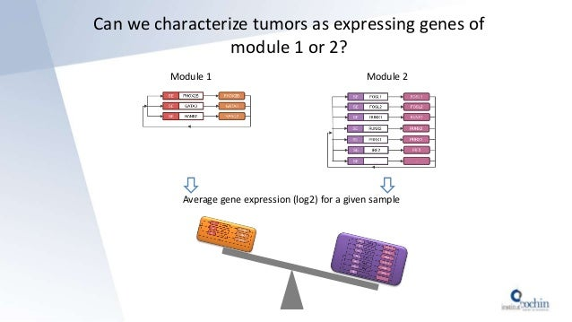 Can we characterize tumors as expressing genes of module 1 or 2? Module 1 Module 2 Average gene expression (log2) for a gi...