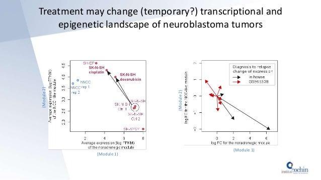 Treatment may change (temporary?) transcriptional and epigenetic landscape of neuroblastoma tumors (Module 1) (Module2) (M...