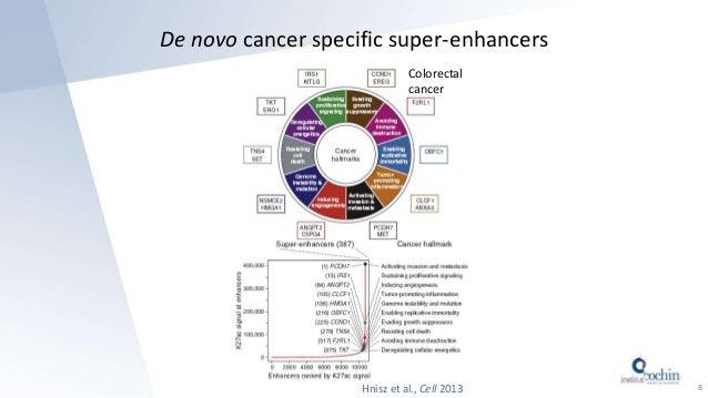De novo cancer specific super-enhancers 8 Colorectal cancer Hnisz et al., Cell 2013