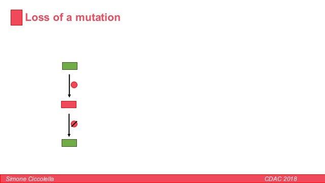 Loss of a mutation Simone Ciccolella CDAC 2018