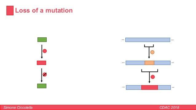 Loss of a mutation Simone Ciccolella CDAC 2018 …… …… ……