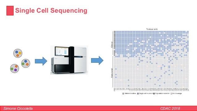 Single Cell Sequencing Simone Ciccolella CDAC 2018