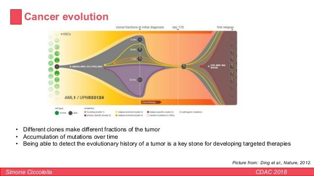 Cancer evolution Simone Ciccolella CDAC 2018 • Different clones make different fractions of the tumor • Accumulation of mu...