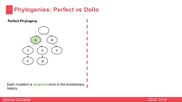 Phylogenies: Perfect vs Dollo Simone Ciccolella CDAC 2018 Perfect Phylogeny BA FC D E Each mutation is acquired once in th...