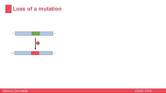 Loss of a mutation Simone Ciccolella CDAC 2018 …… ……